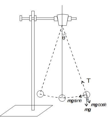 Simple Pendulum Study Page
