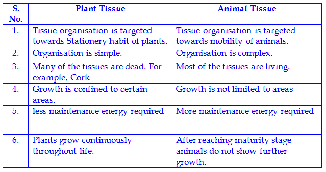 what is plant tissue culture biology essay Looking for free examples of biology essays or research need professional help writing your biology essay or research plant tissue culture – essay sample.